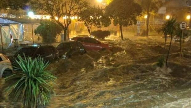 """""""El agua se llevaba mi auto y vimos pasar hasta un perrito"""""""